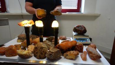 Photo of Zatrzymano przemyt ok. 10,5 kg bursztynu.