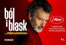 """Photo of Pedro Almodóvar """"Ból i blask"""" w Kameralnym Kinie Letnim w MOCAK-u"""
